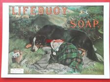 POSTCARD  ADVERTISING - LIFEBUOY SOAP - ON GUARD - DOG WAITING OVER BABY
