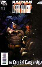 BATMAN Legends of the Dark Knight (1989) #202 - Back Issue