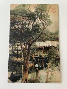 GREAT WHITE FLEET ~ ALBANY, AUSTRALIA KING BRIDGE ~ 1908 POSTCARD