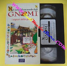 VHS film cartonata NEL MERAVIGLIOSO MONDO GNOMI CRISTINA D'AVENA(F96)no dvd