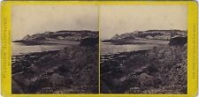 Clevedon UK Photo Francis Bedford Stereo Vintage Albumine ca 1865