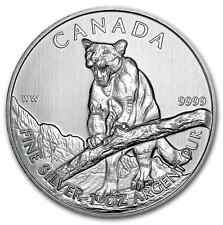 5 dollars 2012 Puma Cougar 1 once pièce argent pur 1 oz 999,9 Lingot NEUF