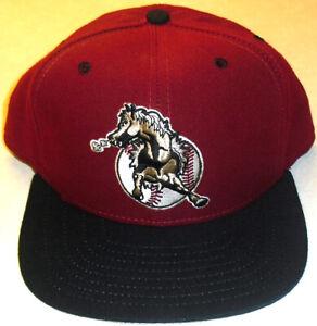 San Bernardino Stampede Minor League Baseball 90s New Era Snapback hat Rare
