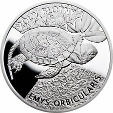 "Poland Turtle 2010 ""2"" Limited Edition Ag"