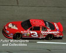 DALE EARNHARDT SR #3 TAZMANIAN DEVIL LOONEY TUNES TAZ 2000 8X10 PHOTO NASCAR