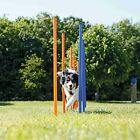 TRIXIE Agility Slalom Weave Poles for Dogs with 12 Poles Included Blue/Orange...