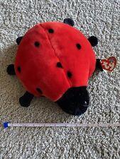 TY Beanie Baby - LUCKY the Ladybug (9 inch) Plush
