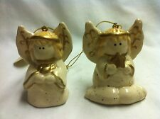 Ornament - Pair of Crazy Mountain Angels