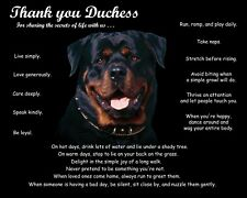 Rottweiler Dog Picture/Wall Art-Personalized w/Name-Unique Dog Lover's Gift