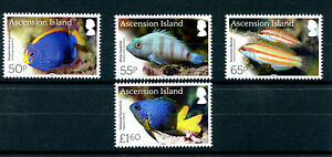 Ascension Island 2016 MNH Endemic Fish 4v Set Wrasse Fishes Marine Stamps