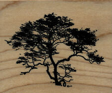 """mounted  rubber stamps  African Tree med size  wood mount 2 1/2"""" X 3"""""""