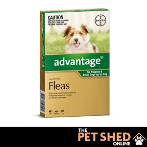 Advantage Green Flea Control Treatment for Small Dogs upto 4kg Spot On ALL DOSES