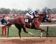 Secretariat 1973 Kentucky Derby Winner Turcotte 8 X 10 Photo