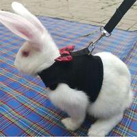 Pet vest cat rabbit hamster guinea pig ferrets breathable harness belt lead v