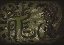 PAINTING GRAPHIC TEXT CHINESE JAPANESE KANJI DRAGON PRINT POSTER GZ5717