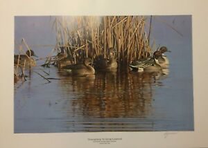 """""""Evening Sprig"""" by George Lockwood 2014 - NC Ducks Unlimited Artist of the Year"""