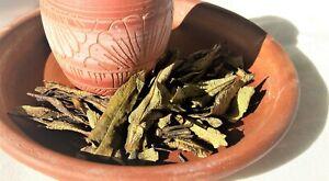 Yerba Santa - Holy Herb Native American Smudging Herb 16g