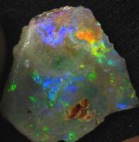 2.6 ct., 14x13x3mm Rough/Pre-faced Australian Lightning Ridge Opal