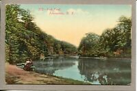 Postcard NY Schenectady Vale Pond Man Woman Lovers Nature c1915 -514