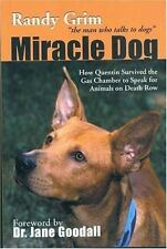 Miracle Dog: How Quentin Survived the Gas Chamber to Speak for Animals on Death