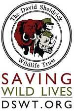 The David Sheldrick Wildlife Trust Car Bumper Sticker