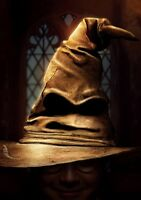 HARRY POTTER & THE PHILOSOPHER'S STONE Movie PHOTO Print POSTER Textless Art 004