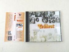 TRUBROT - TRUBROT- CD SI WAN RECORDS - MADE IN KOREA - WITH OBI SRMC4016 - NM-DP