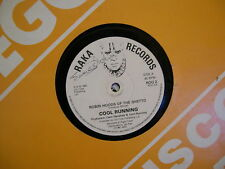 "Cool Running-Robin Hoods Of The Ghetto 12""-RAKA RECORDS LABEL-RARE!!!!!!!!!!!!!!"