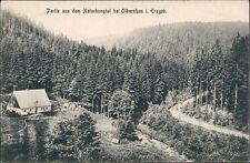 Ansichtskarte Natschung-Kallich Načetín Kalek Natschungtal - Hütten 1914