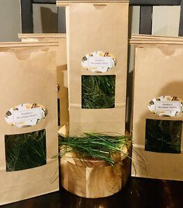 Pine Needle Tea Bags Wild Suramin ORGANIC Fresh Immunity BoostingVitamin A & C