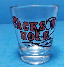 Jackson Hole Wyoming Cowboy Hat Boot Rope Clear Shot Glass Bar Barware VTG EUC