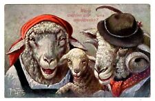 POSTCARD THIELE SIGNED SHEEP DRESSED IN HATS T.S.N. SERIES 1413
