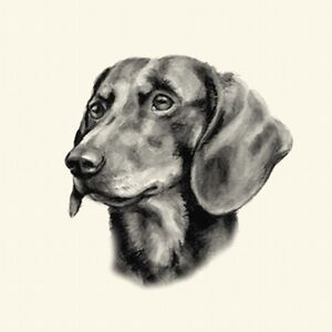 Dog Show Ring Number Clip Pin Breed - Dachshund Smooth-Haired