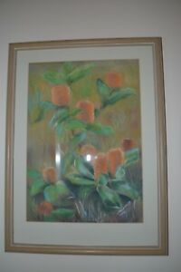 Original pastel drawing of banksia flowers framed with glass and mat
