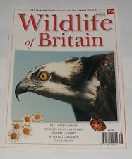WILDLIFE OF BRITAIN ISSUE 28 - OSPREY/LAMPREY/LADYBIRDS/DAISY,DAISY