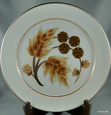Denby UK Stoneware Cotswold Dinner Plate (s) Brwn Plant Leaves Acorns Stem 1970s