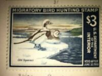 Migratory Bird Hunting Stamp Duck Old Squaws 1967