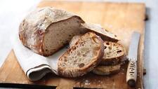 Best Organic Rye Sourdough starter 1st Class Postage 80g Fresh 40 old Yeast