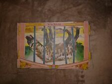 Vintage 1901 CHICAGO AMERICAN Newspaper Supplement Zoo Animal HYENA