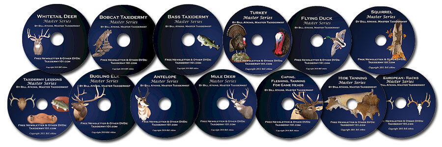 Learn Taxidermy From Home On DVD.