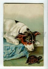 New listing 3148882 Jack Russell Terrier & Turtle vintage Color Pc