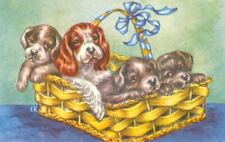 Rare Postcard Cocker Spaniel Mom & 3 Mixed Breed Puppies Oops! Ek Denmark 1958
