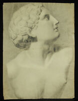 Drawing Original Art Sculpture Greco-Roman Young Man IN Bust Athlete c1900