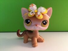Littlest Pet Shop # 19 Brown Cat Accessories In Photo's Included