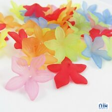 20pcs Star Flower Bead Cap Craft Beads Frosted Acrylic Mixed 27x7mm Hole 1.2mm