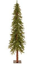 National tree company: 6ft Hickory  Cedar Tree New