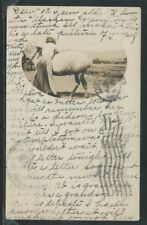 """CA Clinton RPPC 1907 HORSE """"KITTY WEE"""" and WOMAN Mssg Old Pony is fat as Butter"""