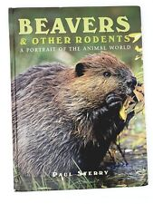 Beavers and Other Rodents 1998 Hb Paul Sterry Vintage Book Animals Zoology