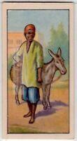 Native African Donkey Boy 80+  Y/O Ad Trade Card