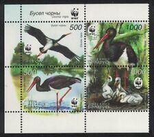 Belarus WWF Black Stork Ciconia nigra Block of 4 MNH SG#630-633